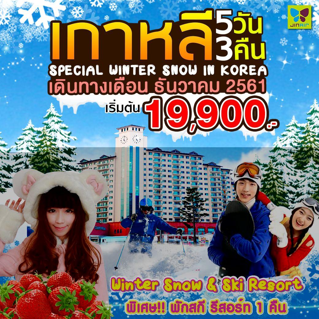 เกาหลี WINTER SNOW & SKI RESORT (พักสกี รีสอร์ท 1 คืน)